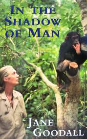 Jane Goodall, Chimpanzees, Strong Woman