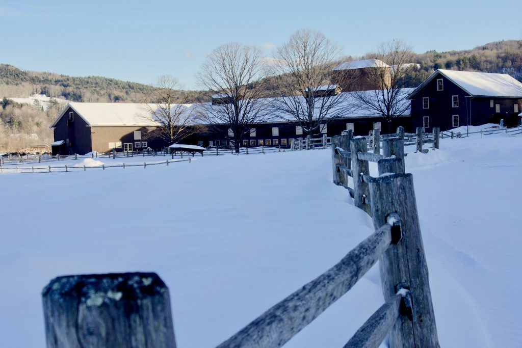 Billings Farm Woodstock Vermont